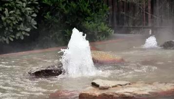 周末必去|离上海最近的天然温泉---太仓沙溪