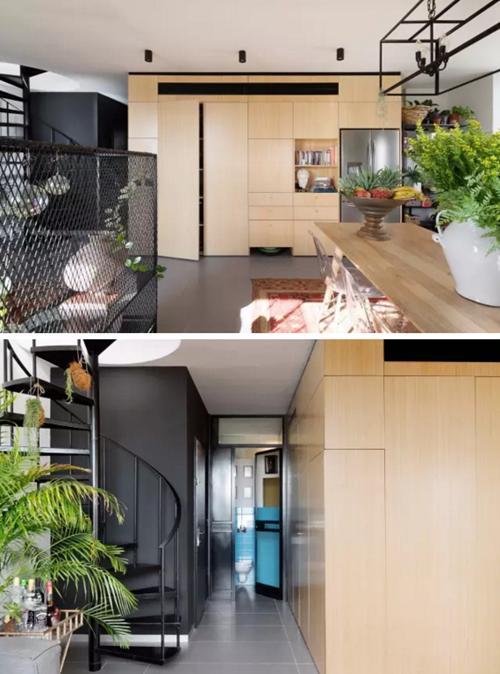只要有绿植,家里就可以这样的生机勃勃!